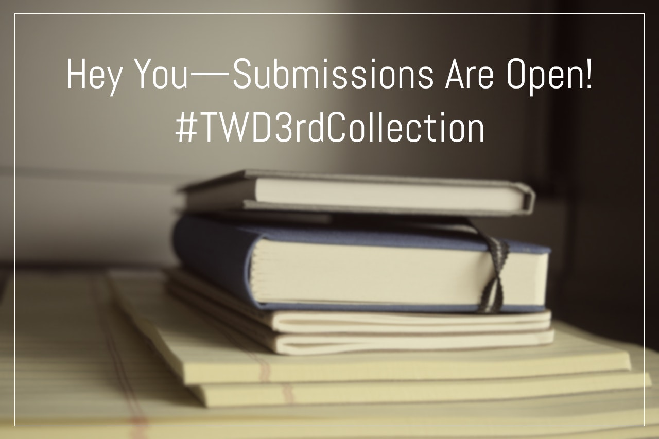 Hey You -- Submissions Are Open! | TWD Magazine 3rd Collection | Black Lion Journal | The Wire's Dream Magazine