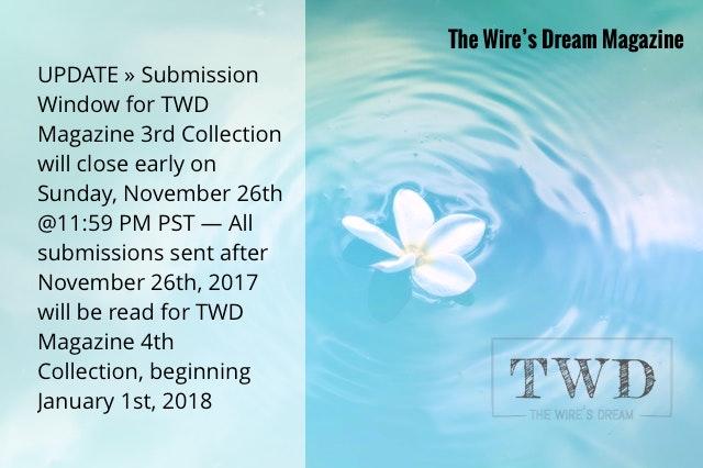 TWD Magazine Update