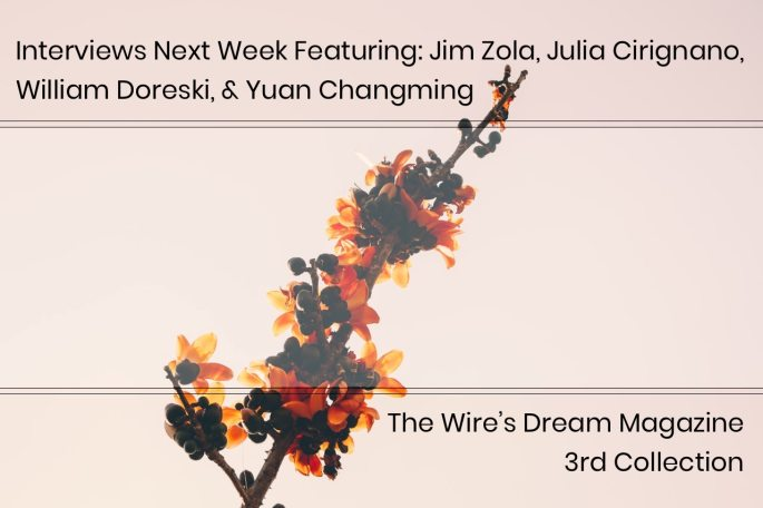 Interviews T/TH Next Week Featuring: Jim Zola, Julia Cirignano, William Doreski, & Yuan Changming | TWD 3rd Collection