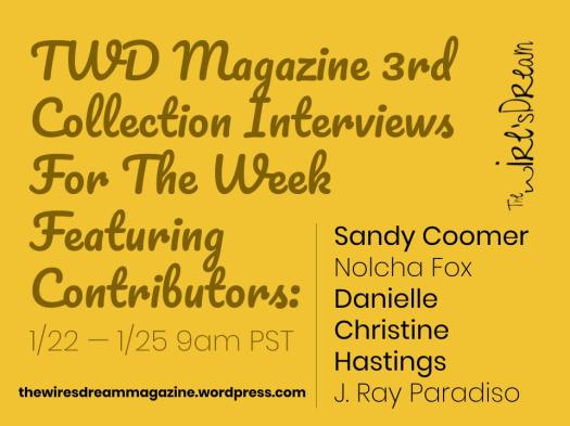 TWD Magazine 3rd Collection Interviews For The Week Featuring Contributors: Sandy Coomer, Nolcha Fox, Danielle Christine Hastings, & J. Ray Paradiso | TWD 3rd Collection