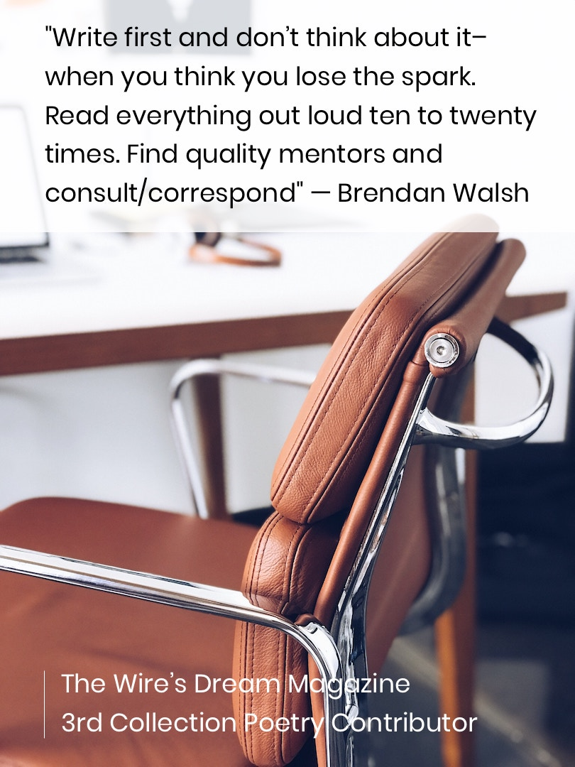 TWD Magazine 3rd Collection Interview: Brendan Walsh — Poetry Contributor