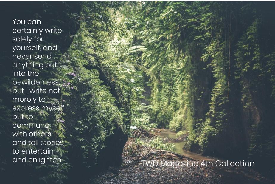 TWD Magazine 4th Collection Interview: Brandon Marlon — Poetry Contributor